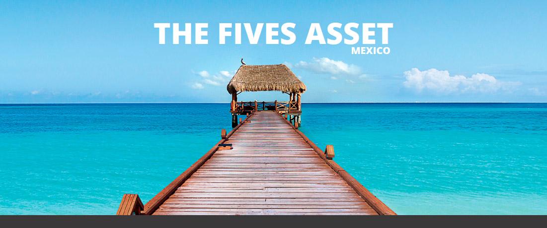 asset-program-mx-cover