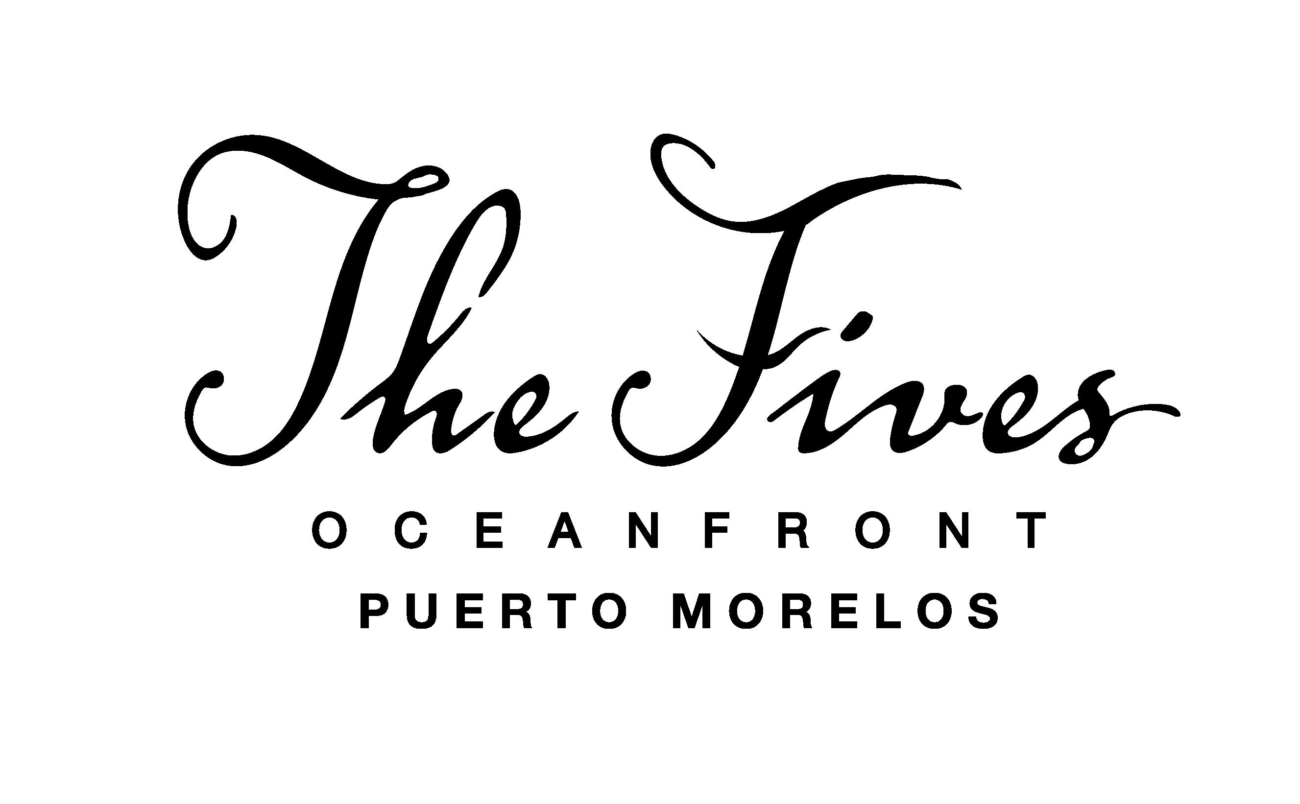 Logo_TFO_negro